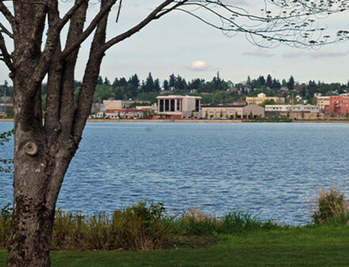 New Homeowner's Guide to Olympia
