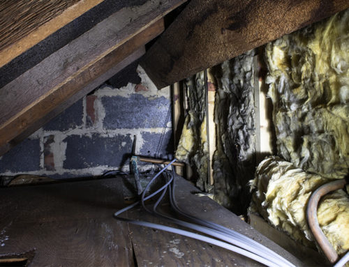 The Benefits of a Crawl Space Clean-Out
