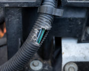 rodent damage chewing car wiring